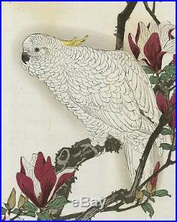 1892 Orig JAPANESE WOODBLOCK PRINT IMAO KEINEN Bird & Flower Parrot, Magnolia