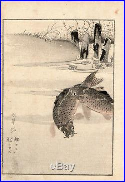19th Kikuchi Hobun CARPE Japanese woodblock print ORIGINAL 1891
