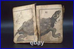 Japanese Antique Edo period Ukiyoe woodblock print hawk turtle crab APB72