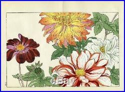 KONAN Japanese ukiyo-e woodblock floral print DAHLIA 2