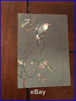 OHARA KOSON (Shoson) JAPANESE Woodblock Print HANGA Finches In Tree