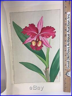 Vintage Japanese Chinese Woodblock Print Floral Rose Flower. Beautiful Print