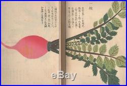 Woodblock printed Pictorial book of flora 19thC Japanese Edo Meiji Antique